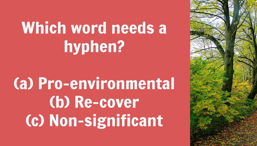Do you need a hyphen in words with prefixes?