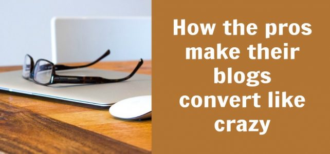 How the pros make their blog convert like crazy