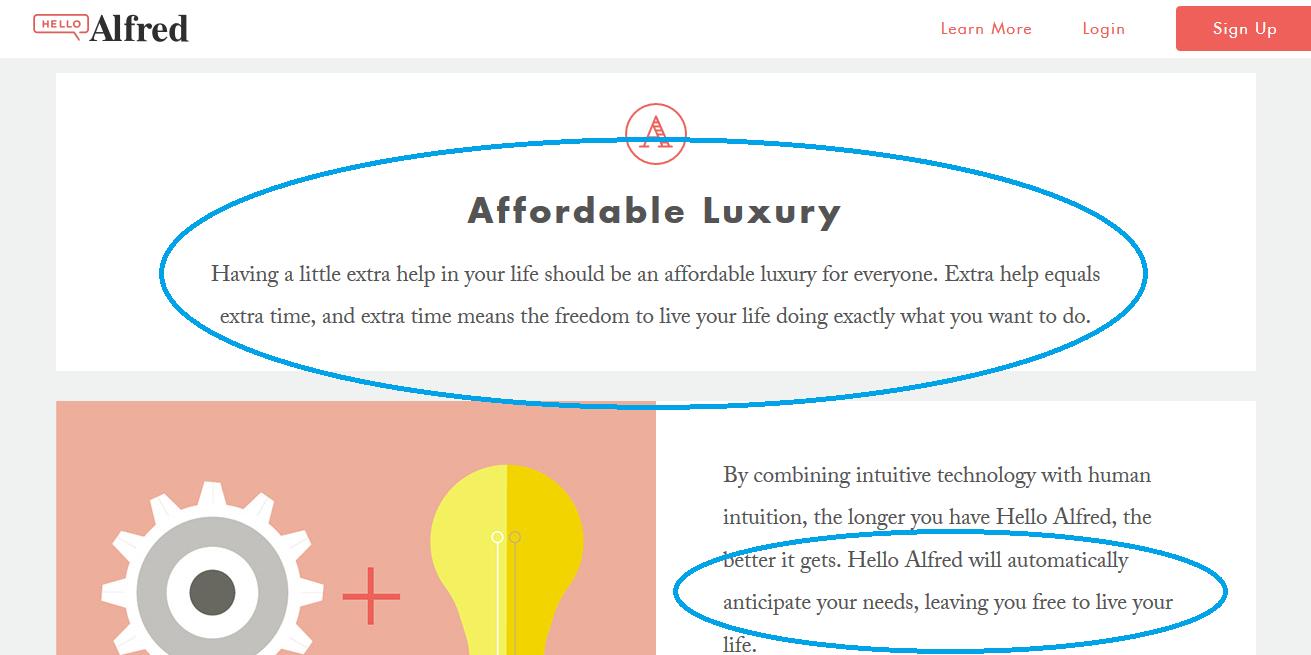 website copywriting mistake